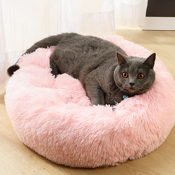 DG-Pet Bed