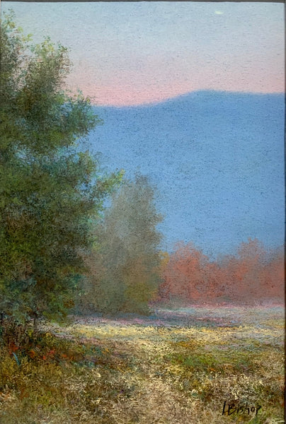 """Summertime in the Mountains"" Original Framed Pastel Painting"