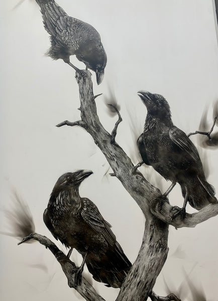 """Three Ravens"" Fumage Drawing on Clay Board"
