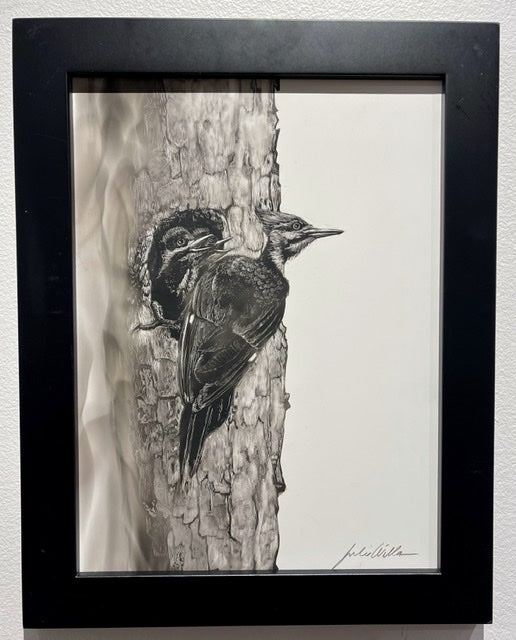 """Pileated  Woodpecker and Chicks"" Fumage Drawing on Clay Board"