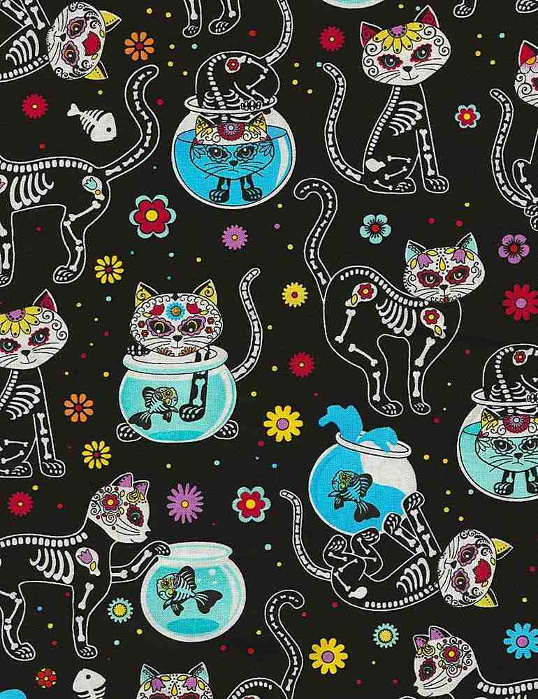 Southwestern Cat Skeletons & Fishbowls