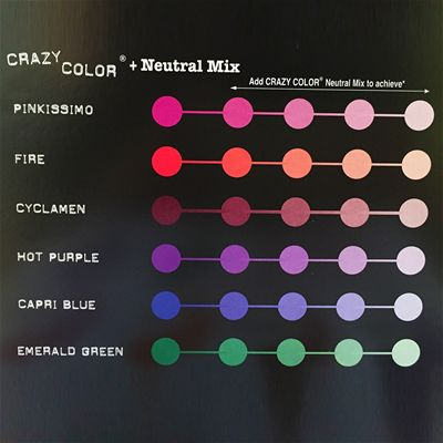 Crazy Color Starter Palette Kit