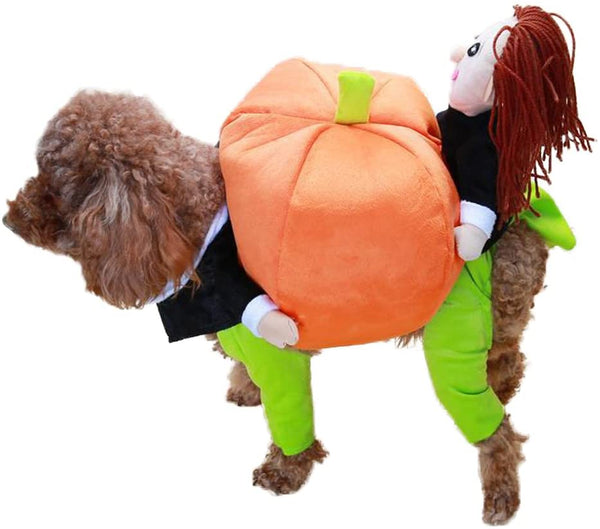 Dog Pumpkin Halloween Costume - Dennet