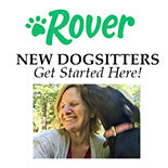 Get Started Dogsitting