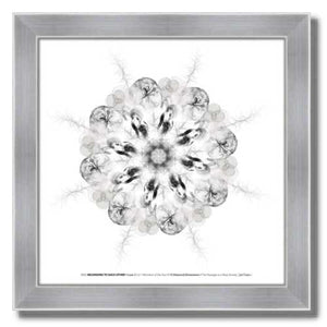 #8 Belonging to Each Other ☼ Diamond Dimensions SEA Series {Art Print} Design Print New Dawn Studios 8x8 Framed