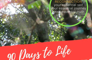 90 Days to Life Journey Life Path