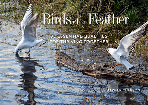 Birds of a Feather Book Books by Dawn