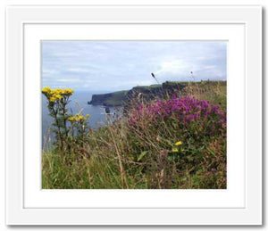 Day's Delight Cliffs of Moher ☼ Soul of Ireland {Photo Print} Photo Print New Dawn Studios 8x10 Framed