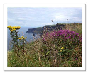 Day's Delight Cliffs of Moher ☼ Soul of Ireland {Photo Print} Photo Print New Dawn Studios 8x10 Unframed