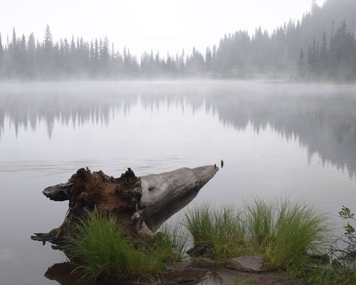 Horse, Haze, Horizon ☼ Soul of Place Reflection Lake {Photo Print} Photo Print New Dawn Studios