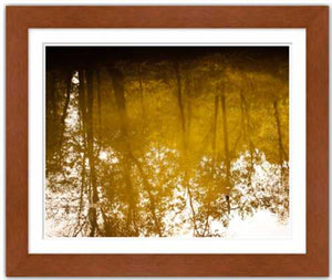 Nostalgic and All That Fades ☼ Soul of Nature {Photo Print} Photo Print New Dawn Studios 8x12 Framed