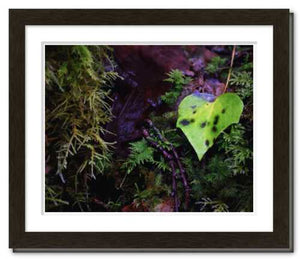 The Love of This Life ☼ Soul of Ireland {Photo Print} Photo Print New Dawn Studios 8x10 Framed