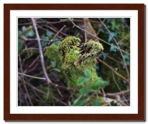 This Kiss ☼ Soul of Nature / Soul of Ireland {Photo Print} Photo Print New Dawn Studios 11x14 Framed