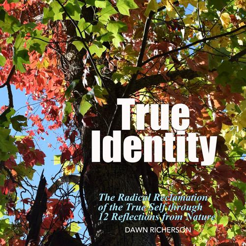 True Identity Book Books by Dawn