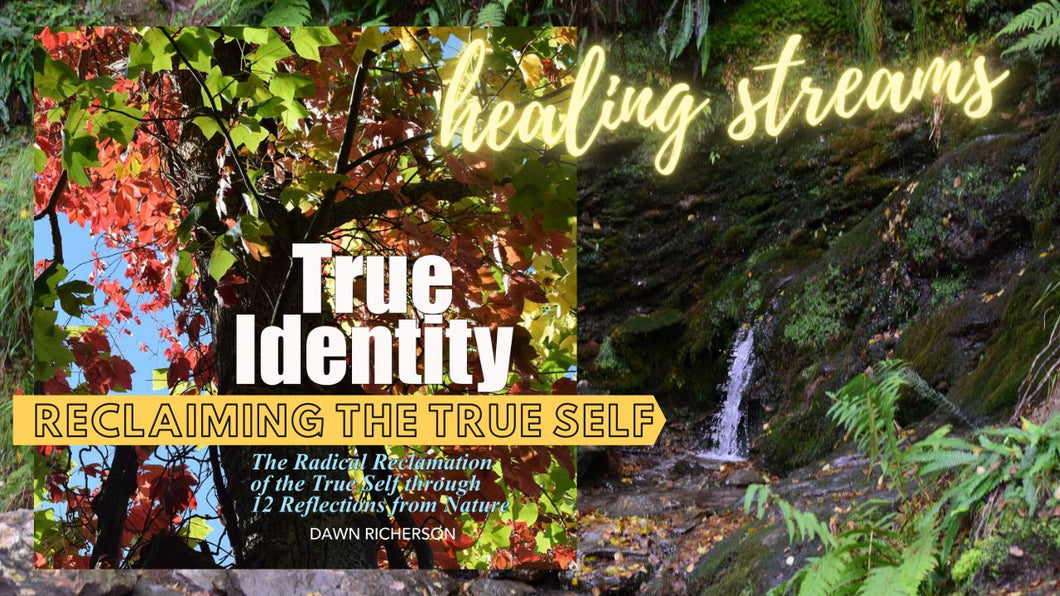 True Identity Journey Life Path