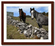 Load image into Gallery viewer, Two Horses at Knocknarae ☼ Soul of Ireland {Photo Print} Photo Print New Dawn Studios 11x14 Framed
