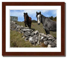 Load image into Gallery viewer, Two Horses at Knocknarae ☼ Soul of Ireland {Photo Print} Photo Print New Dawn Studios 8x10 Framed