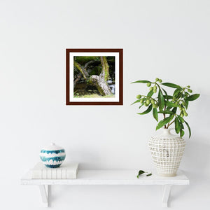 Upraised ☼ Faithscapes & Soul of Nature {Photo Print} Photo Print New Dawn Studios