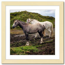 Load image into Gallery viewer, Working Together ☼ Soul of Ireland Horses {Photo Print} Photo Print New Dawn Studios 10x10 Framed