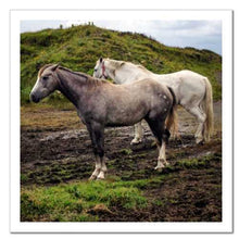 Load image into Gallery viewer, Working Together ☼ Soul of Ireland Horses {Photo Print} Photo Print New Dawn Studios 10x10 Unframed