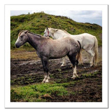 Load image into Gallery viewer, Working Together ☼ Soul of Ireland Horses {Photo Print} Photo Print New Dawn Studios 8x8 Unframed