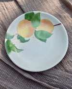 Postcards from Simla - Apricot Appetizer Plates (Set of 6)