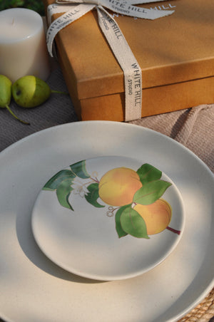 Load image into Gallery viewer, Postcards from Simla - Apricot Appetizer Plates (Set of 4)
