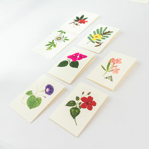 Botanical Gift Cards
