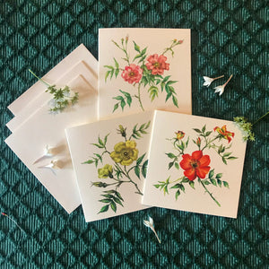 Notecards S/3 - Wild Roses