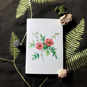 Notebook - Coral Pink Roses