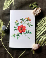 Notebbook - Mandarin Orange Roses