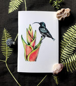 Notebook - Lotens Sunbird
