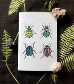 Notebook - Beetles