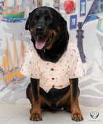 Load image into Gallery viewer, NP  Funny Bunny Shirt - Sizes for Dogs