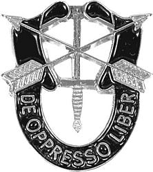 Lapel pin - Special Forces Crest