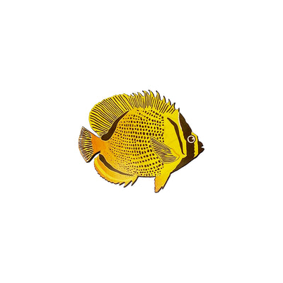 BUTTERFLY FISH ALL OVER DOT TRIVET