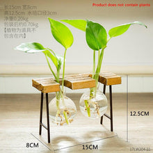 Load image into Gallery viewer, Nordic Glass Bottle Vase Home Decoration Modern Office Desk Hydroponics Vase Living Room Table Flower Vase Decor Wedding Decor - ladystreets