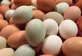 Eggs - One-Time Purchase