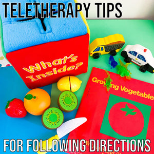 Following Directions in Teletherapy