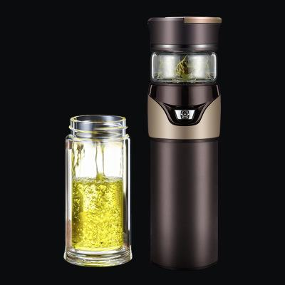 Elegant Glass Tea bottle Double Layer Glass Tea Infuser - Truest Value