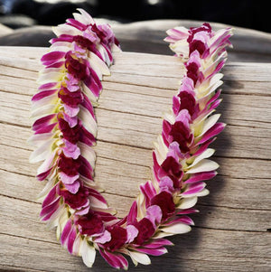 persian indiana lei