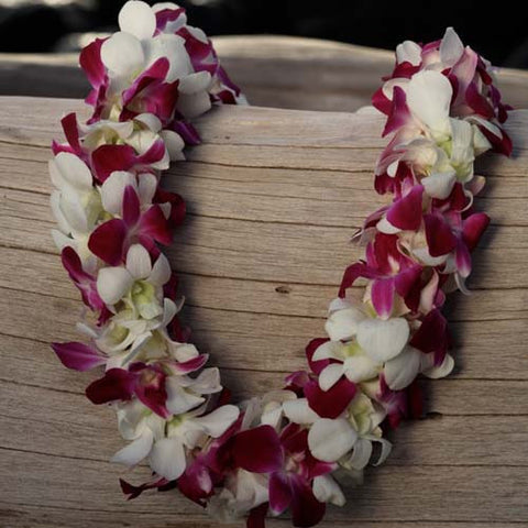 2-color double orchid lei