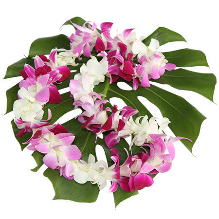 3-Color Orchid Lei -WHSS