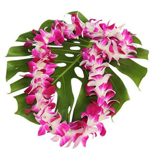 Single Strand Purple Orchid Lei