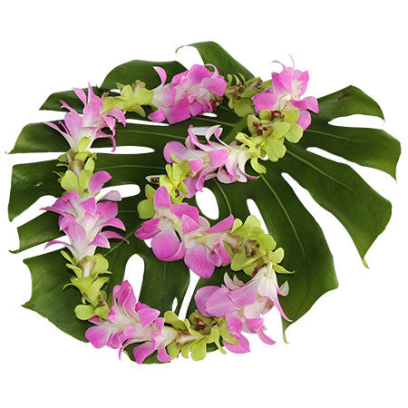 single pink and green lei