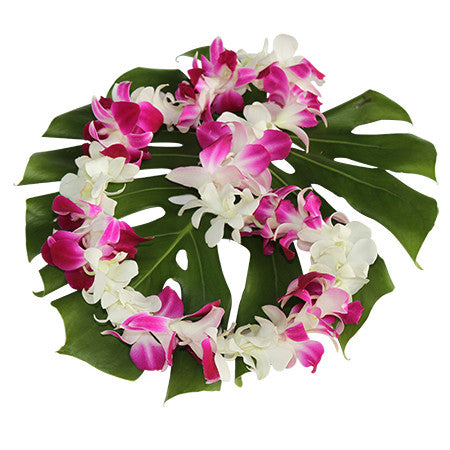 pink & white orchid lei