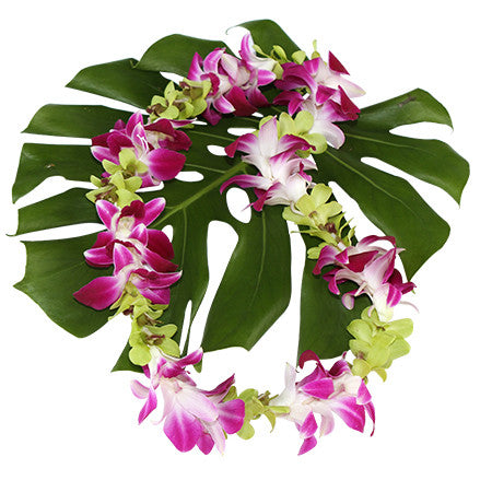 purple & green orchid lei