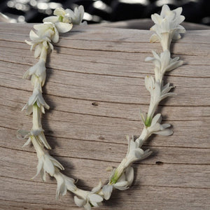 single tuberose lei
