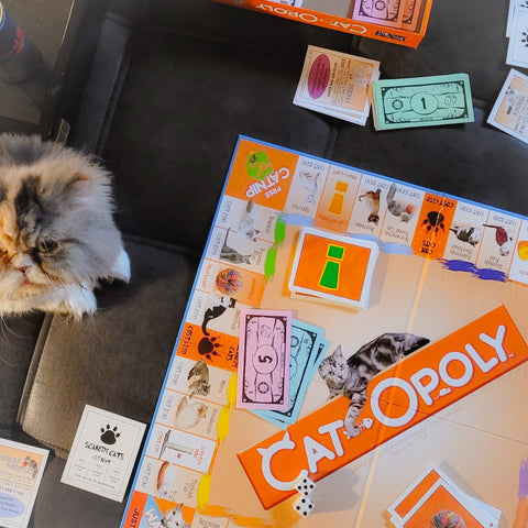 Playing Catopoly