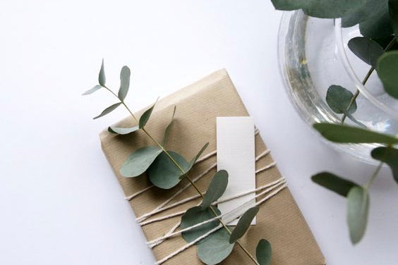 How to Preserve Eucalyptus